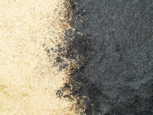 the yin and yang (rice hull and carbonized rice hull)