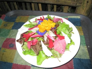 salad with orchids