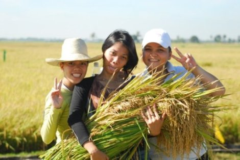 in the service of the Filipino farmers